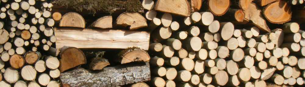 Priceless Paintings from W7